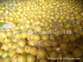 Lemon china,yellow lemon 1