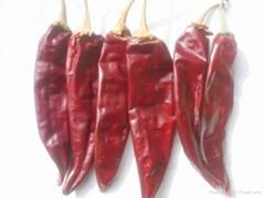 美国红辣椒