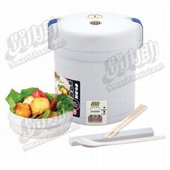 Mini Traveling Electric Cooker