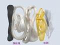 漁絲線 1