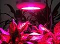 LED Grow Light, LED Grow Lighting, LED