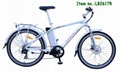 electric bicycle TGS suspension fork