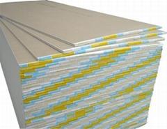 paper-faced gypsum board