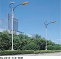 太阳能路灯公司 太阳能路灯招标 太阳能路灯价格 2