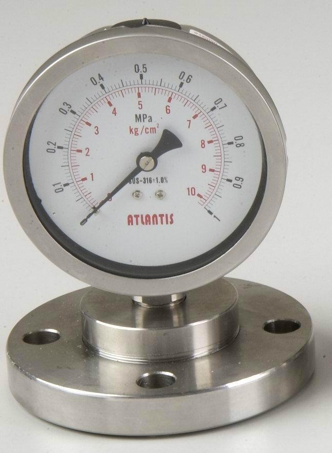 隔膜式压力表 2