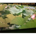 Outdoor P6mm LED Video Displays (Hot Product - 1*)