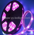 Flexible LED Ribbon Strip SMD 5050 RGB Light