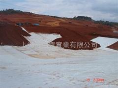 供應江蘇地區鈉基膨潤土防水毯