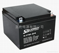 圣豹直流屏EPS应急电源铅酸蓄电池12V24Ah