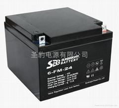 聖豹直流屏EPS應急電源鉛酸蓄電池12V24Ah
