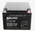 聖豹直流屏EPS應急電源鉛酸蓄電池12V24Ah 2
