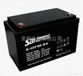 供應聖豹UPS蓄電池12V85