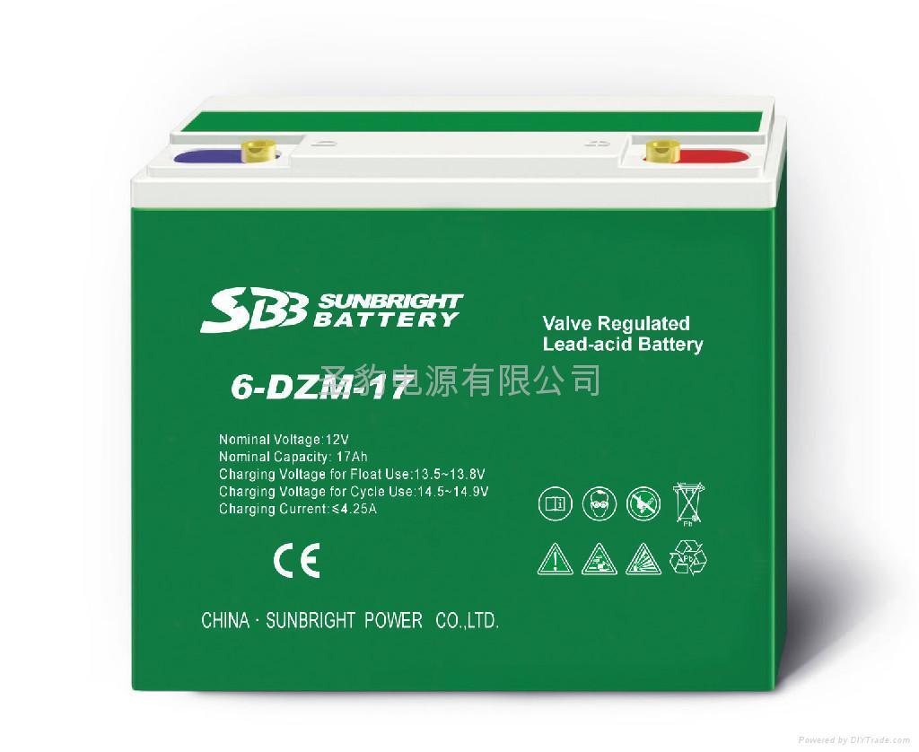 聖豹電動車電池動力電池 3