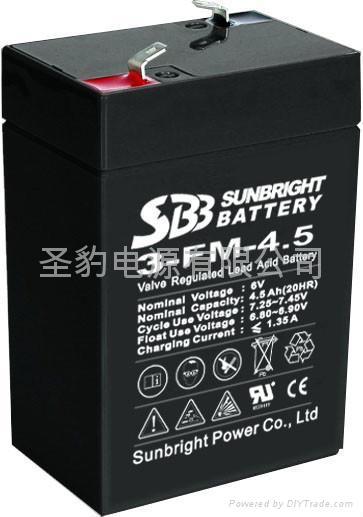 應急燈 電子稱專用聖豹電池 1