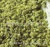 茶食品料理烏龍茶粉(80-200目)