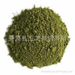 美國NOP和歐盟EEC標準有機綠茶粉(80-200目)