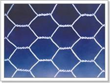 养殖六角网