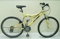 Mountain bike(suspension steel)