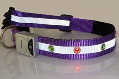 Dog collar and leash-LED lighted and reflective dog collar and leash