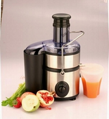 Stainless Power Juicer