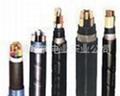 聚氯乙烯絕緣耐火電力電纜 1