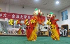 Chinese folk arts:lion dance and dragon dance