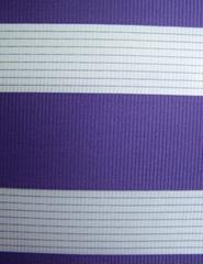 zebra blinds(roller blind fabric)