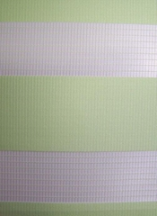 zebra blinds 2