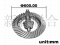 Large Module Spiral Bevel Gear