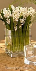 Glass vase for decoration