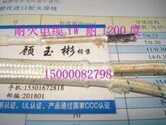 1000度 高温导线(YW500)