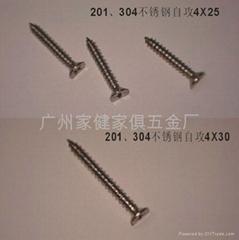 201 304不鏽鋼自攻螺絲