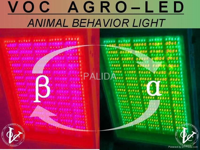 Agro Led 2d Panel Animal Behavior Lighting Palida