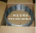 razor barbed wire (Jessie :infoATwirenetting.cc )