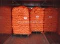 胡蘿蔔 5