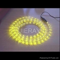 LED Rope Lights (CE, GS, RoHS approved)