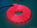 LED Rope Lights (CE, GS, BS,RoHS ) 1