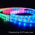 LED Rope Lights (CE, GS, BS,RoHS )