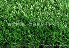 内蒙古人工草坪