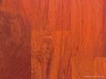 100% High Quality Best Price Wood
