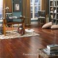 100% High Quality Best Price Hardwood