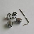 anti-theft valve stem caps