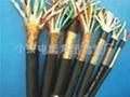 MKVV礦用控制電纜-MKVV