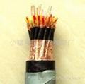 YCW-P橡套屏蔽電纜,YC-