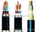 1kv钢带铠装电力电缆型号-vv22,VV电力电缆 1