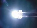 抗光衰白光LED