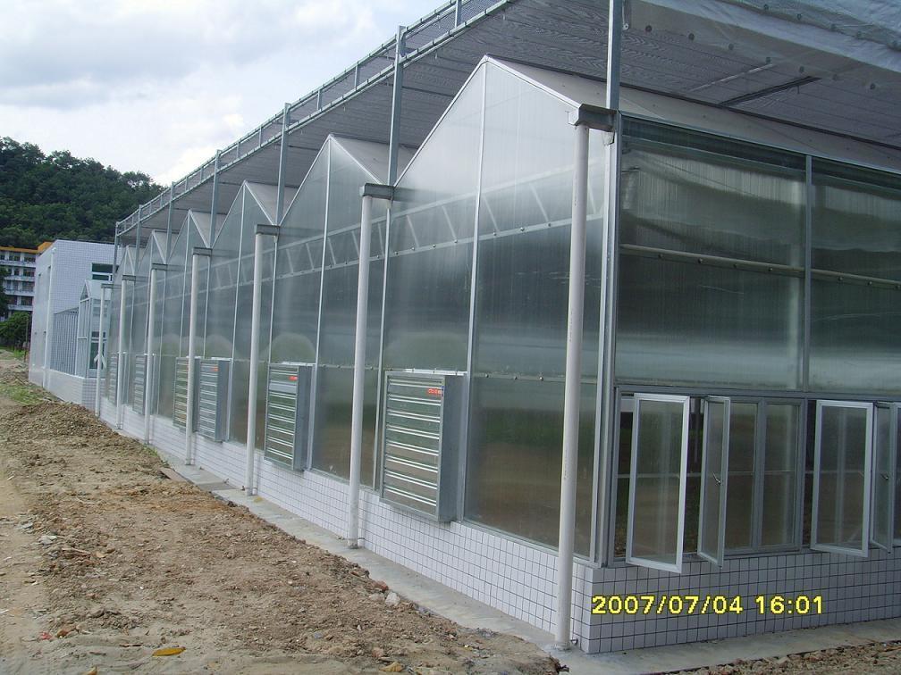 Polycarbonate Sheet Greenhouse Lpc9 6ss4 Ruihua China
