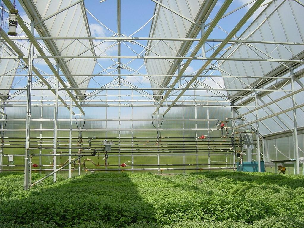 Flower Growing Greenhouse Lpc9 6ss4 Ruihua China