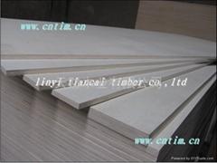 无醛CARB P2板式家具胶合板