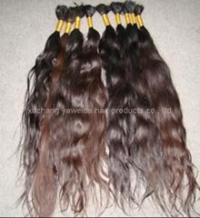 virgin nature braid hair/nature curly hair/natrue bulk hair